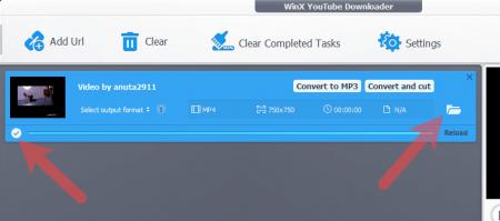 Сохранение видео из инсты завершена