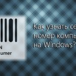 Как узнать серийный номер компьютера на Windows?